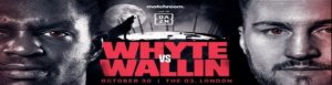 Bet on Dillian Whyte vs Otto Wallin Boxing Fight | October 30th DAZN | Best UK Boxing Sites